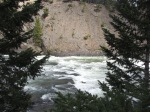Banff 2016 Bow River Falls Rapids Through Trees