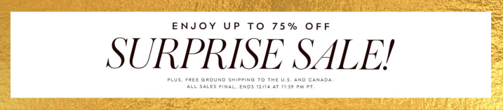 Kate Spade Surprise Sale 2018 Banner